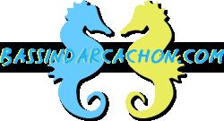 Bassindarcachon.com